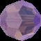 Cyclamen Opal Shimmer