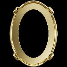 Оправа Swarovski 4120/S, Золото 1PH2OZ, 14*10мм
